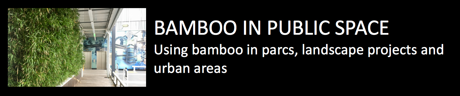 Bamboo in public space using bamboo in parcs landscape projects and urban areas